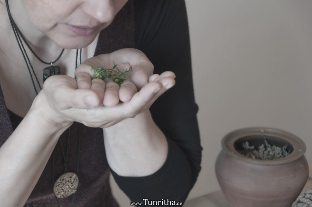 Besprechen der Pflanze - Wachrufen des Pflanzengeistes