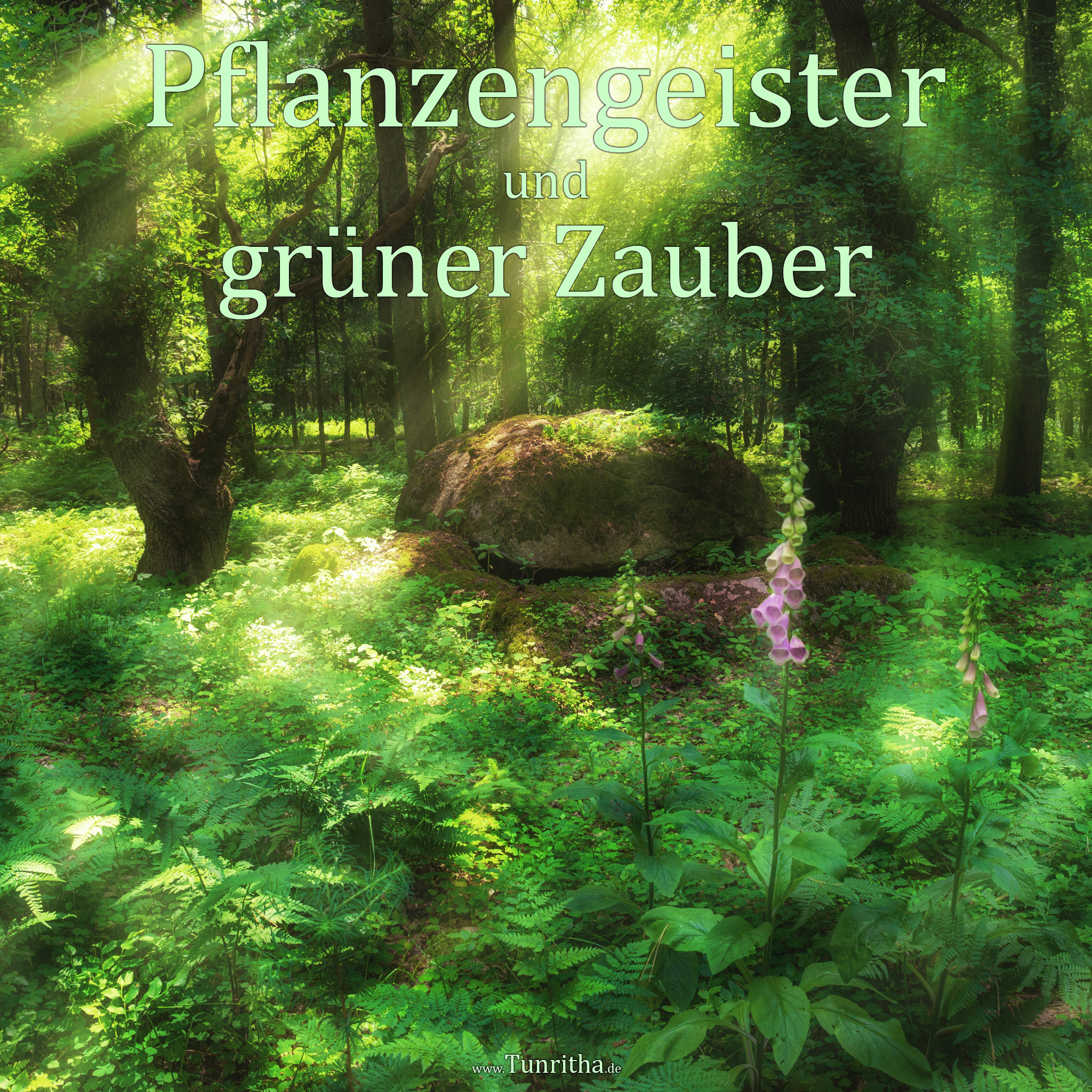 Pflanzengeister und Grüner Zauber